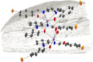 Novel sandwich triple-decker dinuclear NdIII-(bis-N,N′-p-bromo-salicylideneamine-1,2-diaminobenzene) complex