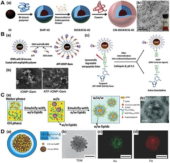 Functionalization of Magnetic Nanoparticles for Drug Delivery