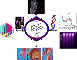 DNA interaction, antimicrobial, anticancer activities and molecular docking study of some new VO(II), Cr(III), Mn(II) and Ni(II) mononuclear chelates encompassing quaridentate imine ligand