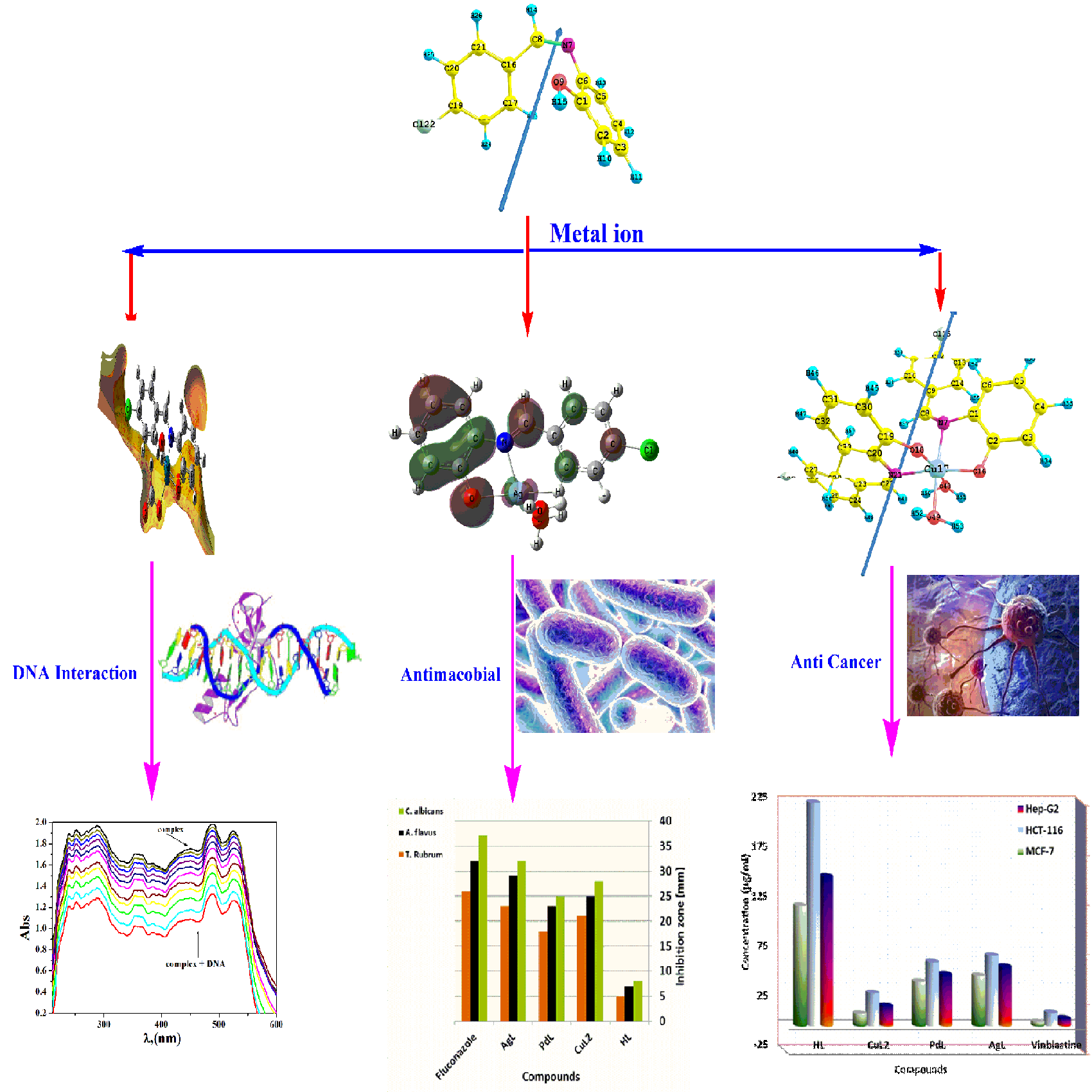 Synthesis, theoretical investigations, biocidal screening, DNA binding, in vitro cytotoxicity and molecular docking of novel Cu (II), Pd (II) and Ag (I) complexes