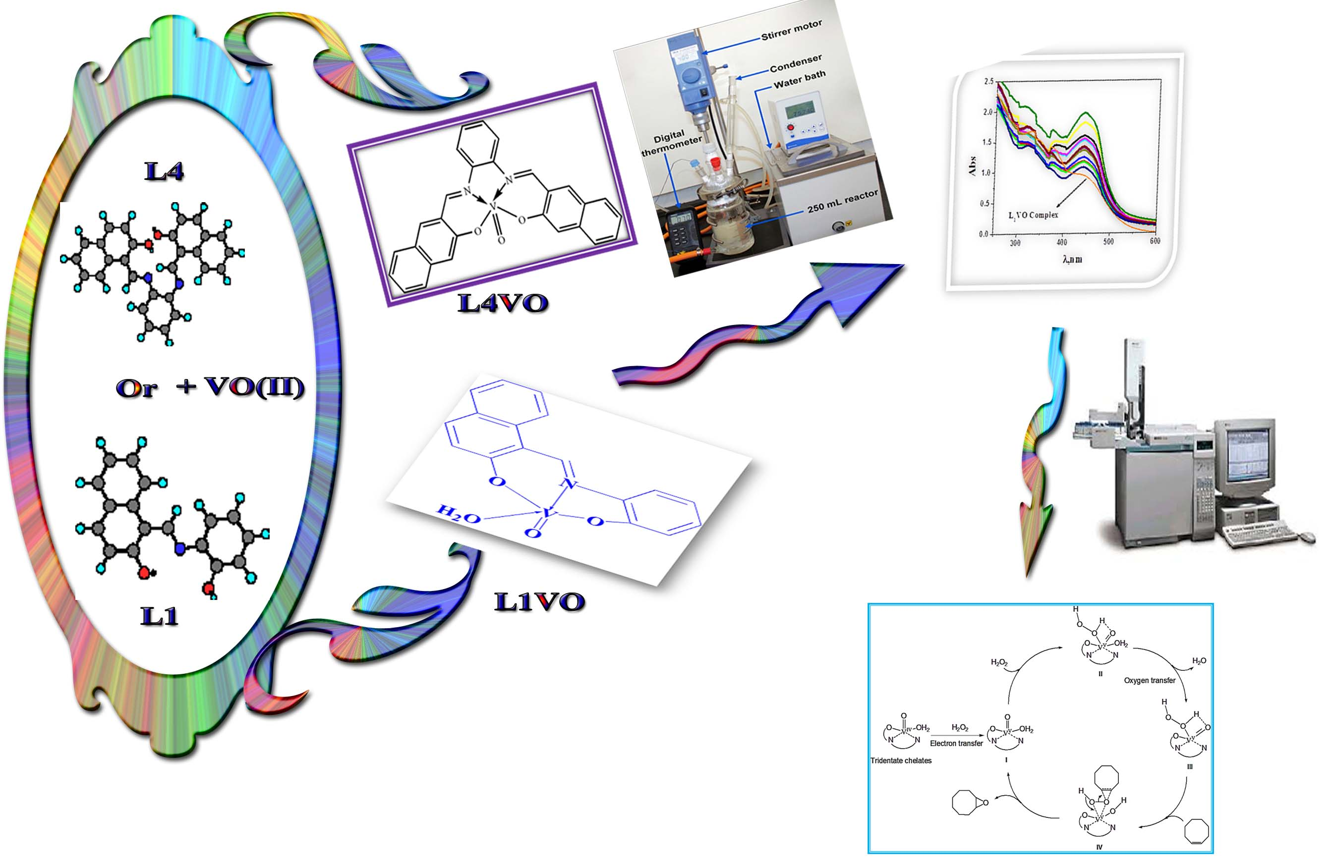 High Selectivity on The epoxidation of Cyclooctene Catalyzed by Tri-and Tetra-Dentate Imine Vanadyl Chelates Using H2O2