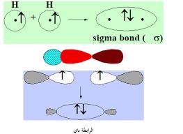 العناوين الرئيسية للمحاضرة التاسعة للفرقة الأولى تربية كيمياء وأحياء