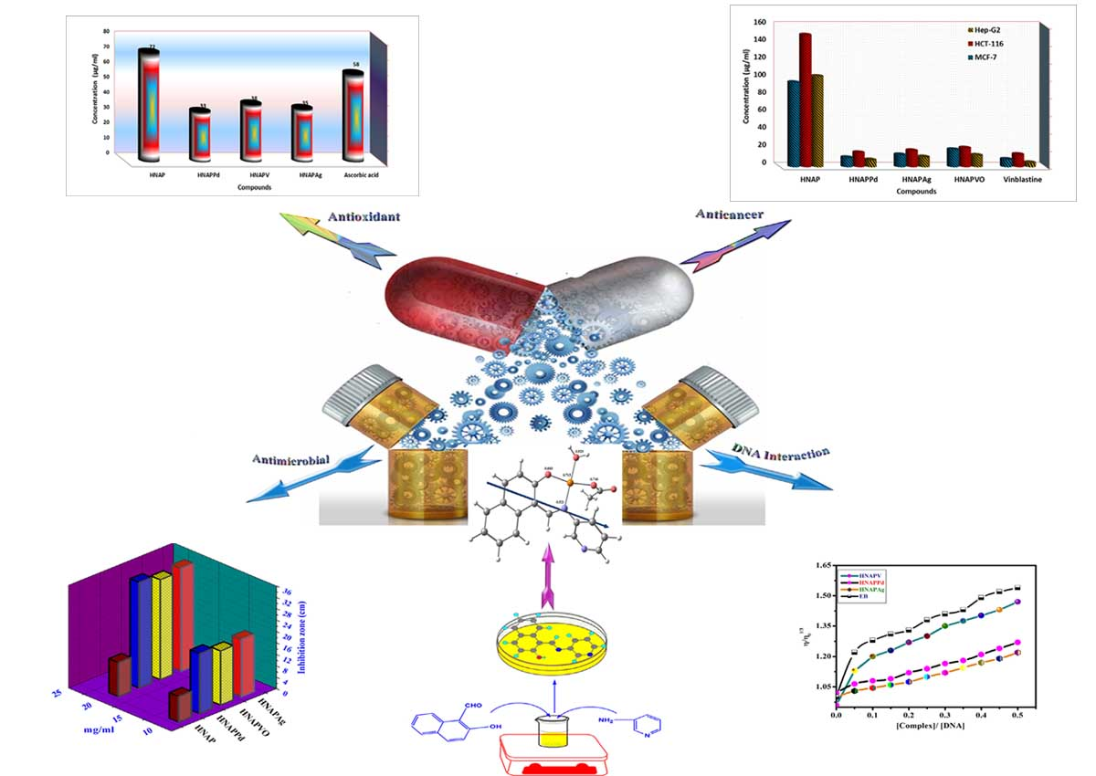 A robust in vitro Anticancerc, Antioxidant and Antimicrobial Agents Based on New Metal-Azomethine Chelates Incorporating Ag(I),  VO(II)  and Pd(II) Cations: Probing the Aspects of DNA Interaction