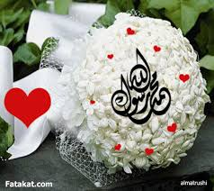 Amal_Mohamed123
