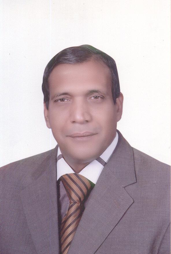 alaaeldin_mohamed