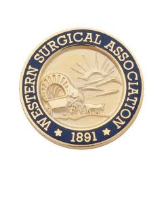 Western Surgical Association (WSA) 126th Scientific Session 2018 Annual Meeting , Nov 03 - 06, 2018 at JW Marriott Los Cabos Beach Resort and Spa, San Jose del Cabo, Baja California Sur, Mexico.