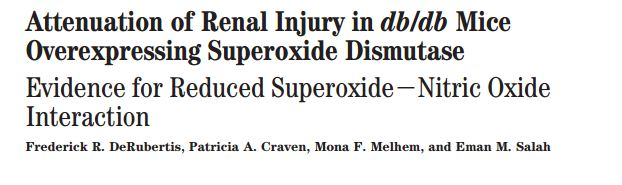 Attenuation of renal injury in db/db mice overexpressing superoxide dismutase: evidence for reduced superoxide-nitric oxide interaction