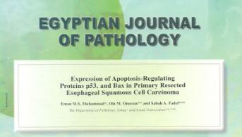 Expression of apoptosis-regulating proteins p53, and bax in primary  resected esophageal squamous cell carcinoma