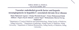 Vascular endothelial growth factor and hepatic neoangiogenesis in hepatitis C associated chronic liver disease