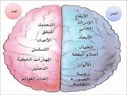 فاعلية برنامج تدريبي لتنمية أنماط التفكير المرتبطة بنصفي الدماغ لتحقيق النمط المتكامل وأثره في الدافعية للتعلم لدى طلاب كلية التربية