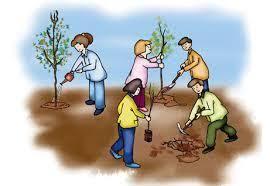 فعالية استخدام المدخل الجمالي في تدريس الدراسات الاجتماعية على تنمية بعض مهارات التخيل والوعي البيئي لدى تلاميذ المرحلة الإعدادية