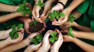 فاعلية برنامج مقترح باستخدام الوسائط المتعددة قائم على البنائية الاجتماعية في تدريس الجغرافيا على تنمية بعض المفاهيم والمهارات البيئية والوعي البيئي لدى طلاب التعليم الثانوي الأزهري