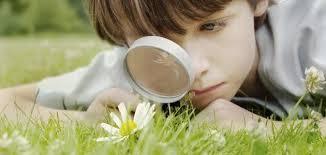 فعالية استخدام التعلم بالتعاقد في تنمية الوعي البيئي لدي طلاب كلية التربية