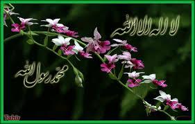aibtism.mohammed674