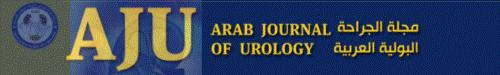 Transobturator vaginal tape (inside-out) for stress urinary incontinence after radical cystectomy and orthotopic reconstruction in women