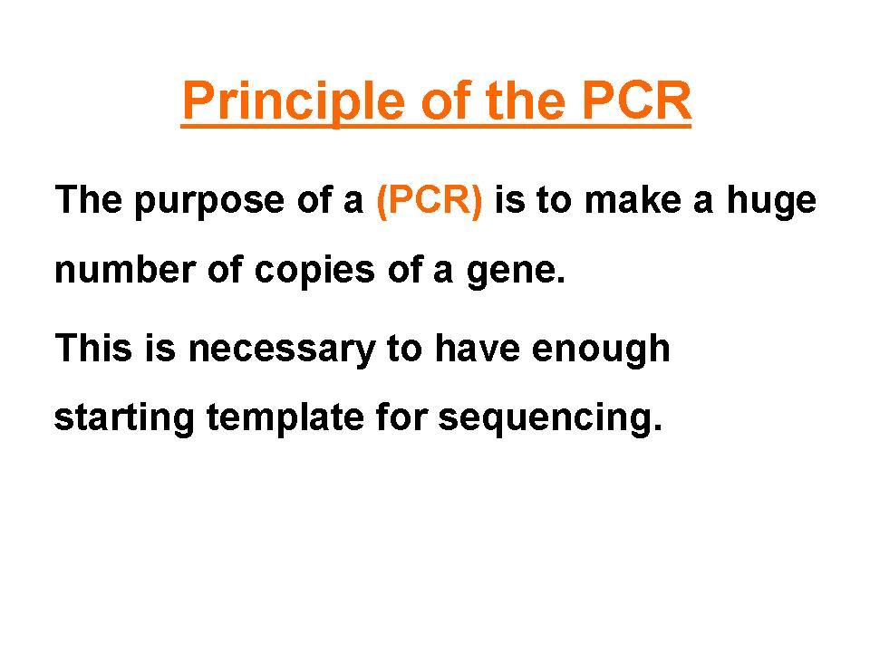 hekmat_osman - PCR