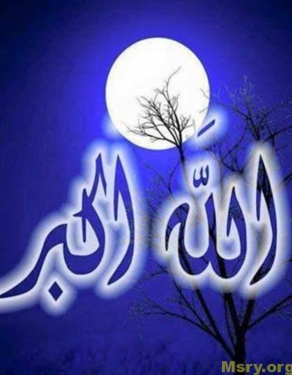 hanan_mahmoud