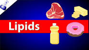 Lipids lectuer
