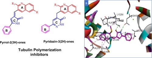 Novel Pyrrol-2(3 H )-ones and Pyridazin-3(2 H )-ones Carrying Quinoline Scaffold as Anti-proliferative Tubulin Polymerization Inhibitors