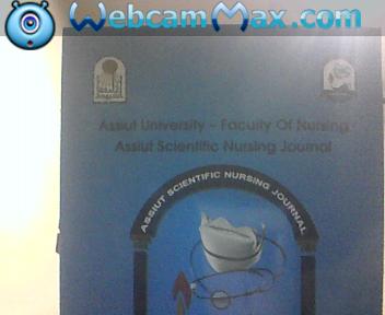 Measuring nurses  productivity at Assiut University hospital
