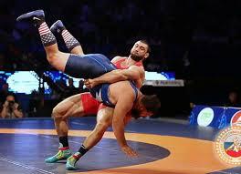تأثير برنامج تدريبي مقترح لتحسين مستوى أداء مهارة خطفة الوسط العكسية (الريبو) في رياضة المصارعة