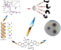 Design, characterization, teratogenicity testing, antibacterial, antifungal and DNA interaction of few high spin Fe(II) Schiff base amino acid complexes