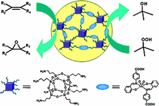 A review on versatile applications of transition metal complexes incorporating Schiff bases
