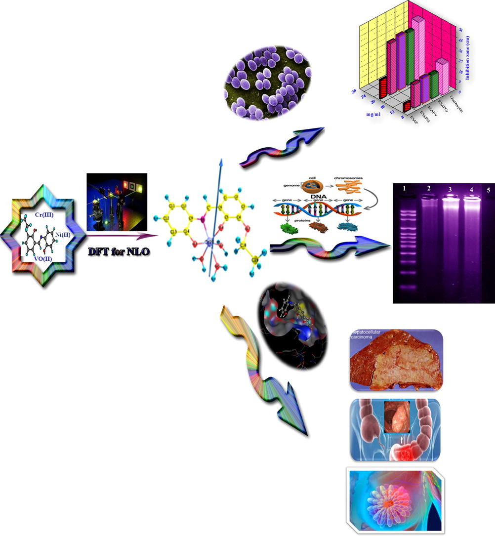 Design and nonlinear optical properties (NLO) using DFT approach of new chelates for DNA interaction, antimicrobial, anticancer activities and molecular docking studies
