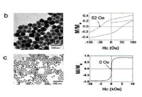 A Simple and Reliable Synthesis of Superparamagnetic Magnetite Nanoparticles by Thermal Decomposition of Fe(acac)3