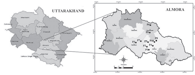 Role of Topography on Characteristics, Fertility Status and Classification of the Soils of Almora District in Uttarakhand