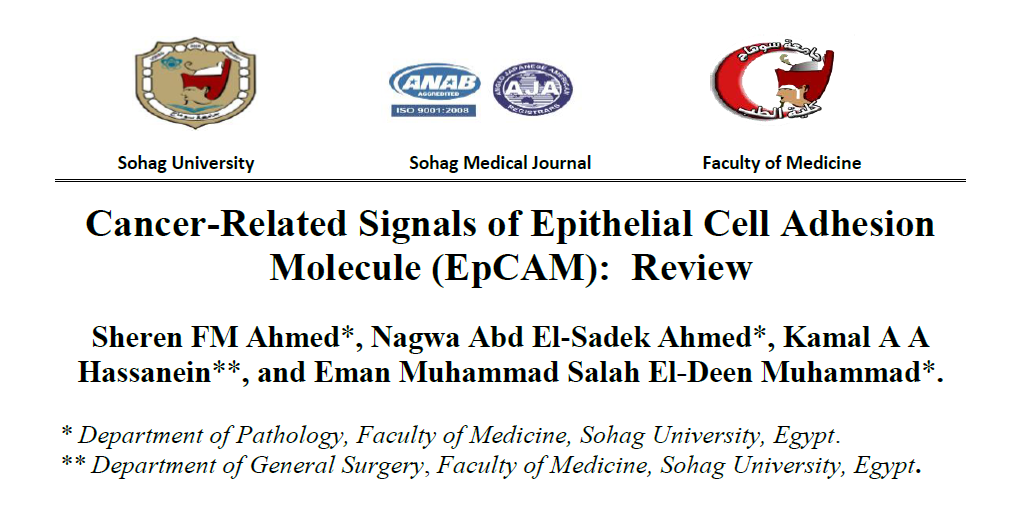 Cancer-Related Signals of Epithelial Cell Adhesion Molecule (EpCAM): Review