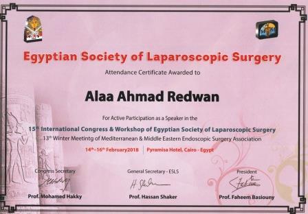 Alternative laparoscopic techniques for stone extraction during laparoscopic CBD exploration (LCBDE); Pros and cons.