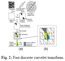 Video Object Extraction using the Curvelet Transform