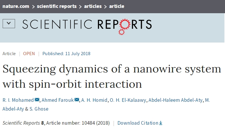Squeezing dynamics of a nanowire system with spin-orbit interaction